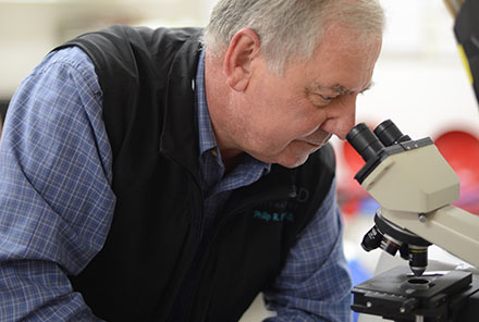 Image of Dr. Loria looking through a microscope